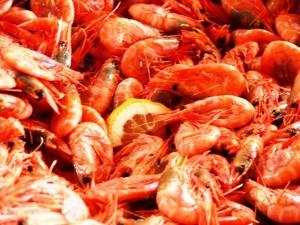 Juicy prawns ... mmm!