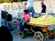 14-8 street scenes Giza