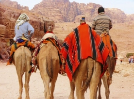 15-12 Petra scenes