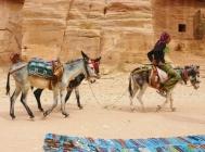 15-14 Petra scenes
