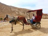 Petra chariot