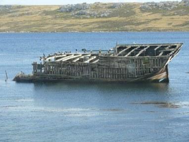 06 Falklands6