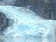 7c-Glacier Bay10