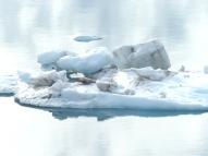 7c-Glacier Bay12