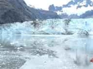7c-Glacier Bay13