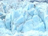 7c-Glacier Bay14