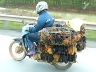 blog2 04 Hanoi's roads