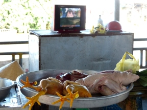 blog6 11 shopping on the Mekong-duck on a plate