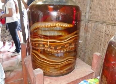 blog6 17 snake wine-yummy