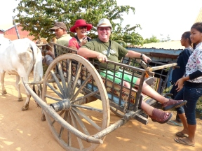 blog8 07 ox-cart fun