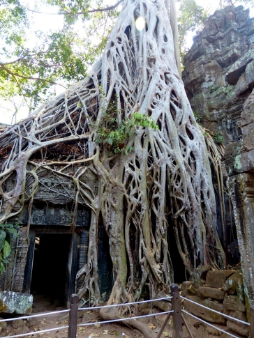 blog9 26 Ta Prohm Temple