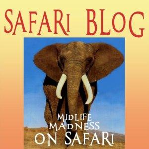 02 Safari blog logo