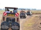 blog3-08 Amboseli