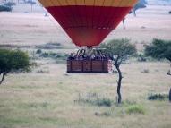 blog7-12 Masai Mara