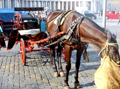 blog6-04 St Peter's Basilica