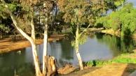 01 Adelaide14