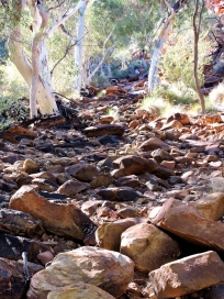 02 Kings Canyon22
