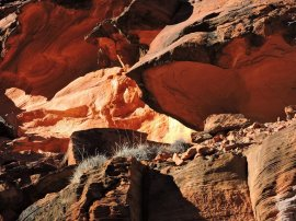 02 Kings Canyon25