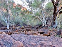 02 Kings Canyon28