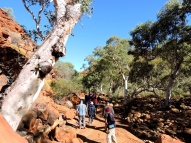 02 Kings Canyon32
