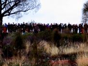 03c Uluru sunrise16