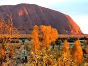 03c Uluru sunrise18