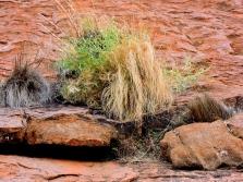 03d Uluru close up32