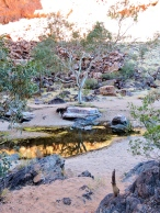 04a Alice Springs 10 Simpsons Gap