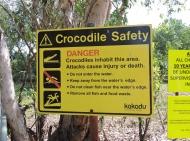 05b crocodiles11