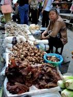 08-32 Yangtze