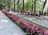 09-42 Chengdu