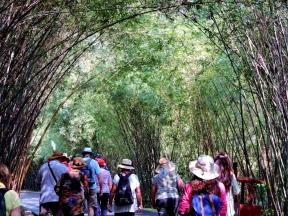 09-43 Chengdu