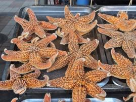 12-22 Beijing BBQ - starfish