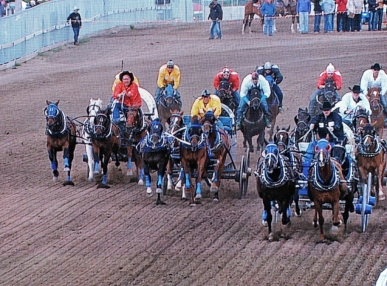 01-22 Calgary Stampede