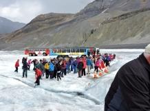 02-24 Athabasca Glacier