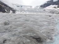 02-26 Athabasca Glacier