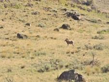 03-09 Rocky Mountaineer