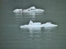 06-59 Glacier Bay