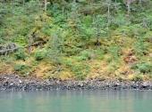 07-16 Kenai Fjords