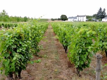 05-07-auberge-du-bon-laboureur-1024x768