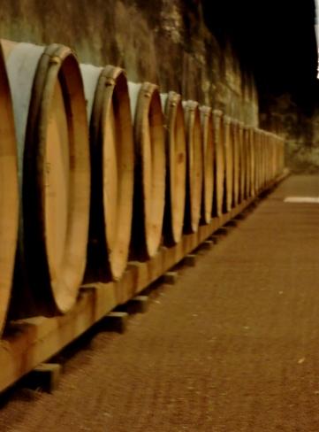 06-65-wine-museum-756x1024