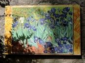 08-06-st-remy-de-provence-1024x770