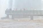 08-28 Iguazu - Brazilian side (800x521)