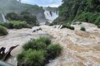 08-30 Iguazu - Brazilian side (800x533)