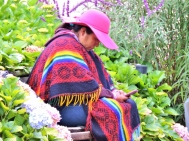 09-04 Sacred Valley (800x600)