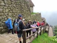 10-12 Machu Picchu (800x598)