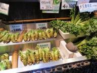 03-03 Nagano - wasabi farm (1024x772)