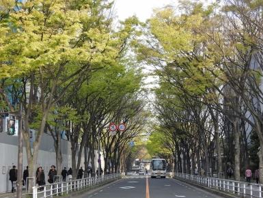 03-22 Osaka (1024x772)