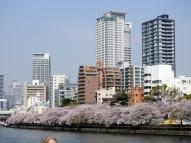 03-24 Osaka (1024x768)