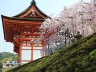 04-12 Kyoto (1024x768)
